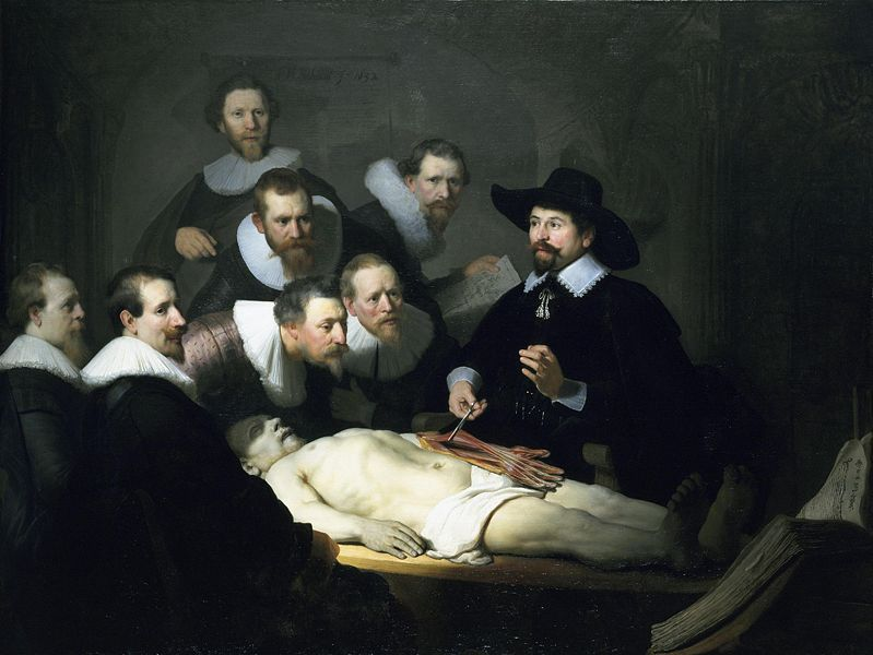 The Anatomy Lesson